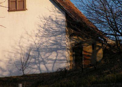 Fejős Miklós: 2011 · Szekszárd