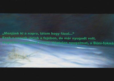 Fejős Miklós: Bóni-fok /// 2002 · 95 × 145, olaj · vászon